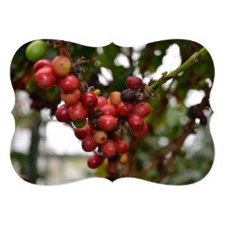 Honduras Coffee Beans Card
