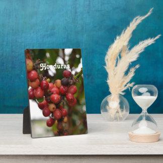 Honduras Coffee Beans Plaque
