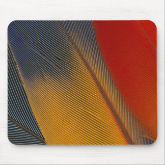 Honduras. Endangered scarlet macaw feathers, Mouse Pad