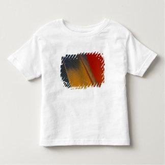 Honduras. Endangered scarlet macaw feathers, Toddler T-shirt