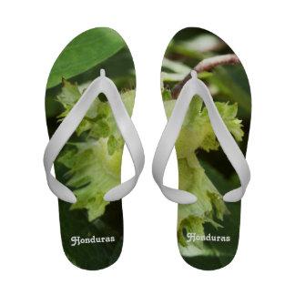 Honduras Hazelnuts Sandals