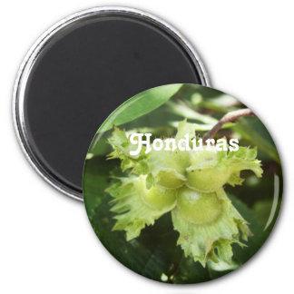 Honduras Hazelnuts Magnets