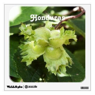 Honduras Hazelnuts Wall Skin