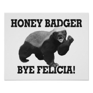 Honey Badger Bye Felicia Poster