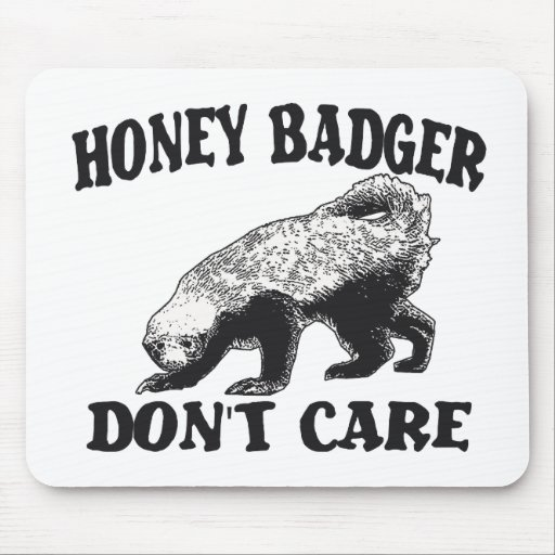 HONEY BADGER DON'T CARE MOUSE PAD