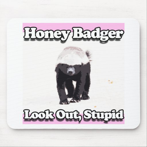honey badger look out stupid pink mousepad