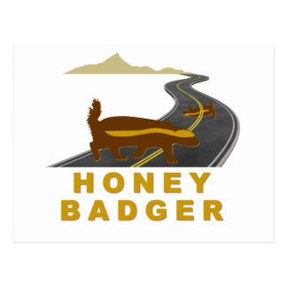 honey badger road kill postcard