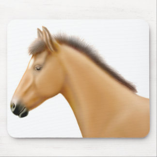 Honey Bay Thoroughbred Colt Mousepad