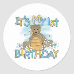 Honey Bear 1st Birthday Classic Round Sticker