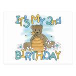 Honey Bear 2nd Birthday T-shirts and Gifts Postcard