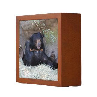 Honey Bear (Sun Bear) Photo Pencil Holder