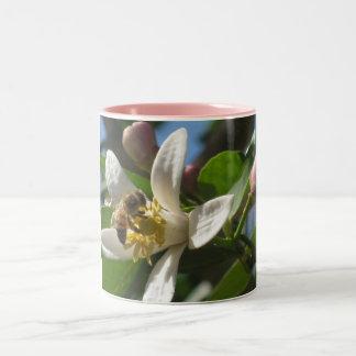 Honey Bee and Lemon Blossom Mug