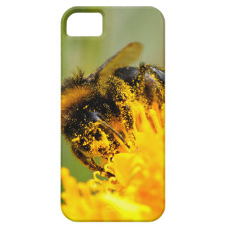 Honey bee and pollen iPhone 5 covers