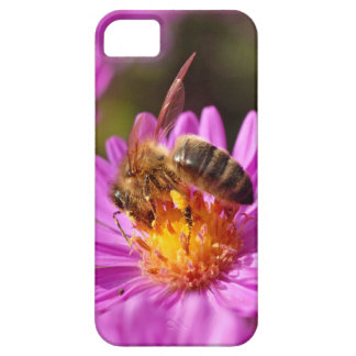 Honey bee and pollination iPhone SE/5/5s case
