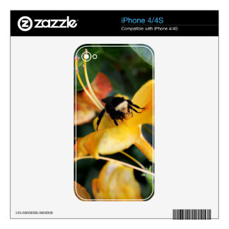 Honey Bee and Tiger Lily iPhone 4S Skins