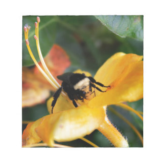 Honey Bee and Tiger Lily Notepad