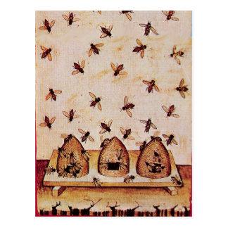 HONEY BEE ,BEEKEEPER /apiary,beekeeping supplies Postcard