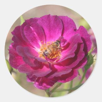 Honey bee classic round sticker
