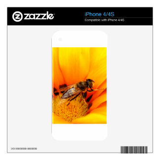 Honey Bee Decal For The iPhone 4