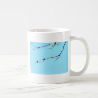 HONEY BEE EATER BIRD QUEENSLAND AUSTRALIA COFFEE MUG