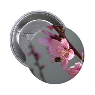 Honey Bee Feeding on Peach Tree Blossom Pinback Buttons
