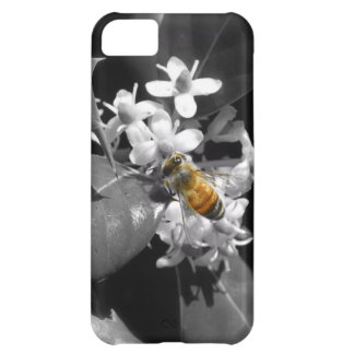 Honey Bee & Holly iPhone 5C Cover