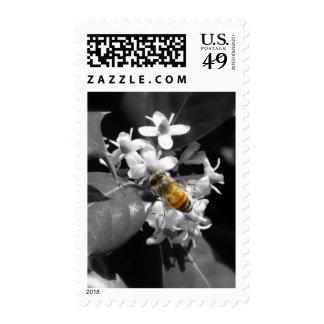 Honey Bee & Holly Postage