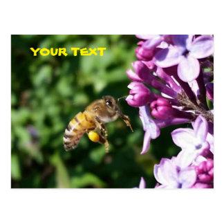 Honey Bee Loves Lilac Pollen Postcard
