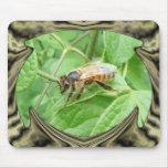 Honey Bee ~ Mousepad