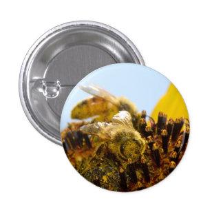 Honey Bee on a Sunflower Button