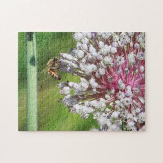Honey Bee on Allium Flowers Puzzle