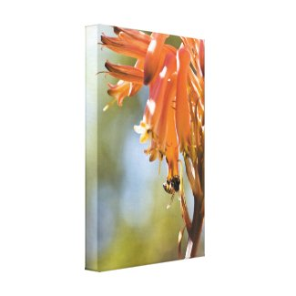 Honey Bee on Aloe Flower Canvas Nature Art
