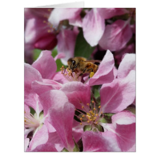 Honey Bee on Blossom with Quote Card