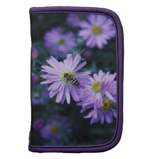 Honey Bee on bright purple flower Organizers