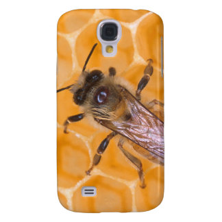 Honey Bee on Comb Galaxy S4 Cases