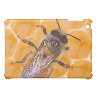 Honey Bee on Comb Cover For The iPad Mini