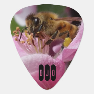 Honey Bee on Crabapple Blossom your Initials Guitar Pick
