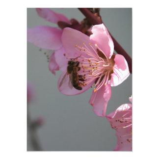 Honey Bee On Open Peach Tree Blossom Custom Invite