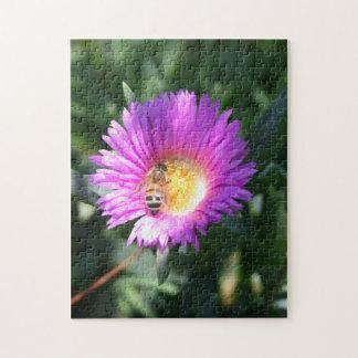 Honey Bee on Pink Daisy - Jigsaw Puzzle