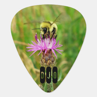 Honey Bee on Purple Blossom your Initials Guitar Pick