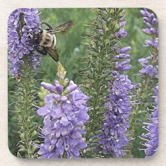 Honey Bee on Purple Flower 2 Beverage Coaster