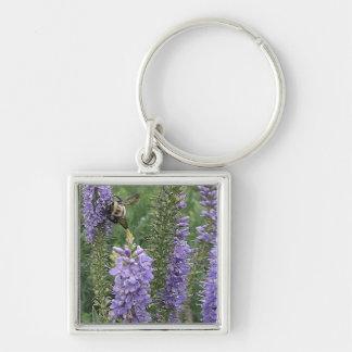 Honey Bee on Purple Flower 2 Keychains