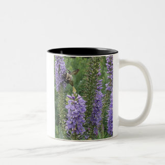 Honey Bee on Purple Flower 2 Two-Tone Coffee Mug