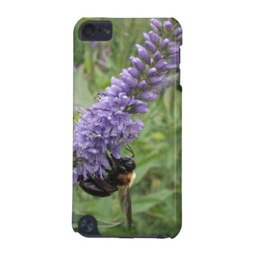 Honey Bee on Purple Flower iPod Touch (5th Generation) Cover