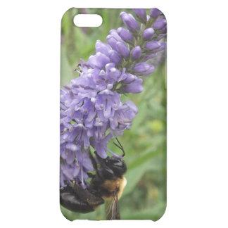 Honey Bee on Purple Flower iPhone 5C Case