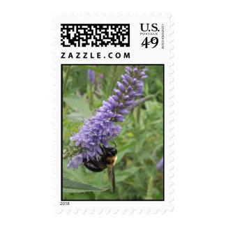 Honey Bee on Purple Flower Stamps