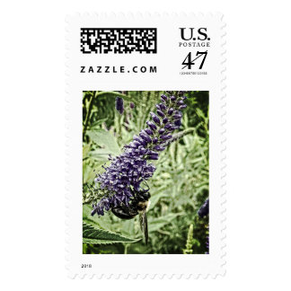 Honey Bee on Purple Flower, Powell Gardens Postage