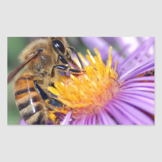 Honey Bee On Purple Flower Rectangular Sticker