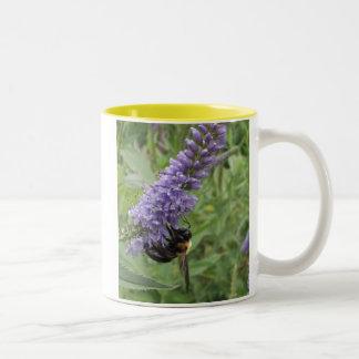 Honey Bee on Purple Flower Two-Tone Coffee Mug