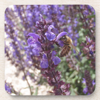 Honey Bee On Woodland Sage Coaster